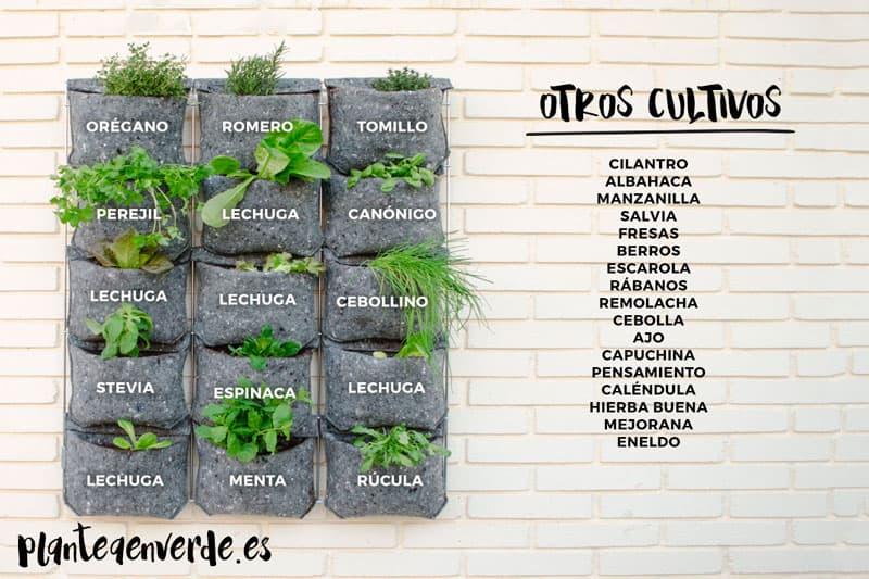 cultivos jardín vertical