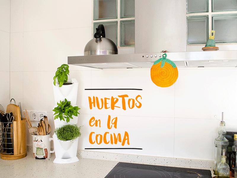 Plantea blog 5 ideas para un huerto de interior en la cocina for Jardin vertical cocina