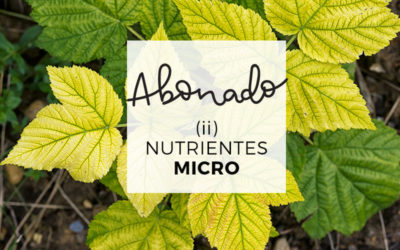 14. Abonado II: Micronutrientes