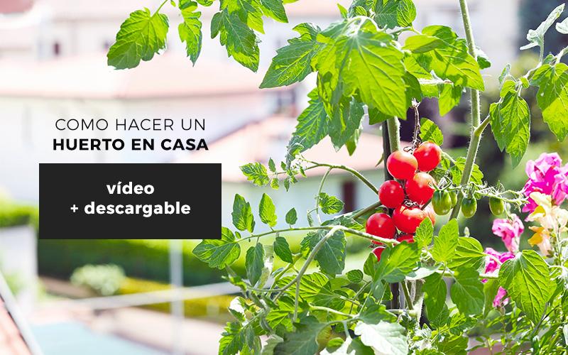 C mo hacer un huerto urbano en casa gu a descargable for Como tener un jardin en casa