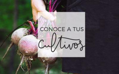 5 – Conoce a tus cultivos