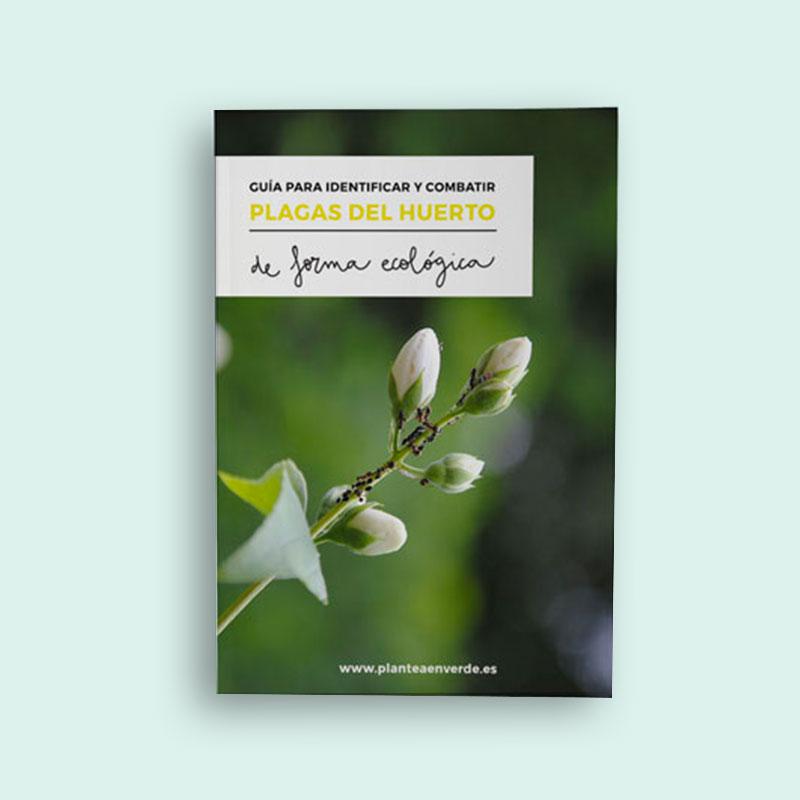 Guía de plagas en el huerto ecológico