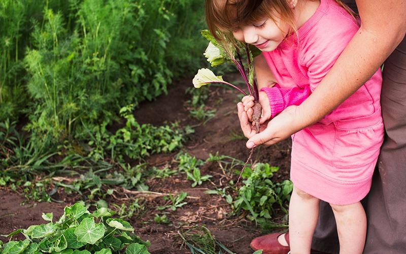El huerto para niños: Entrevista a Cristina de Montessori En Casa
