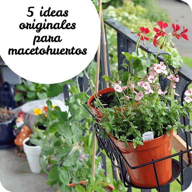 Macetas originales macetas originales para plantas for Macetas originales para plantas