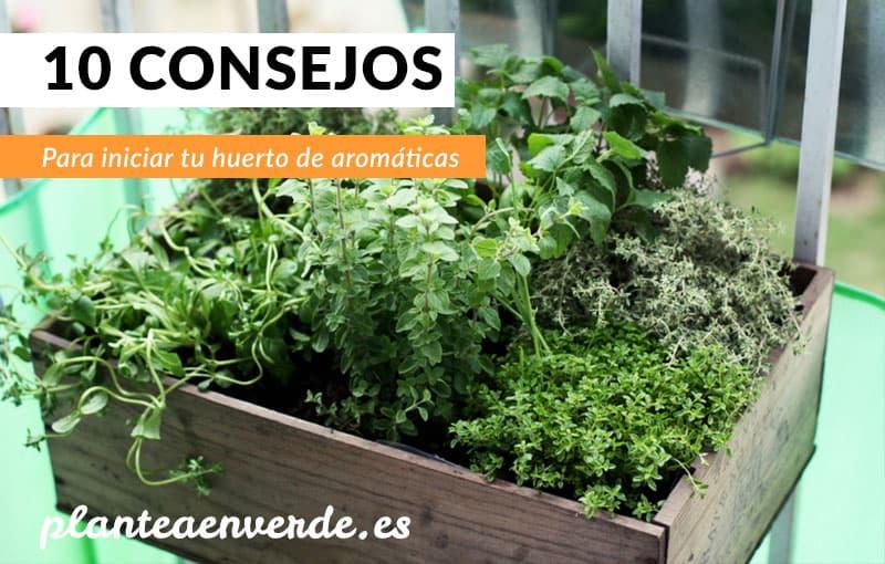 blog - plantea en verde