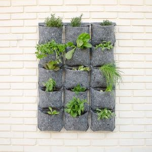 Comprar jard n vertical online plantea en verde for Plantas usadas para jardines verticales