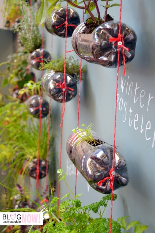 jardin vertical con botellas