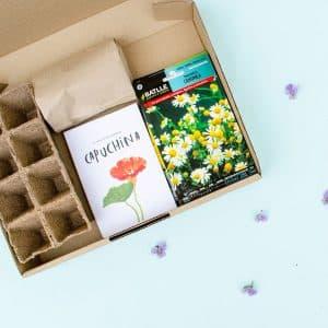kit para cultivar flores comestibles