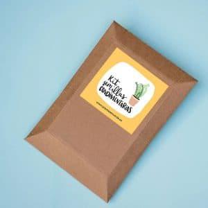 Kit de semillas condimentarias