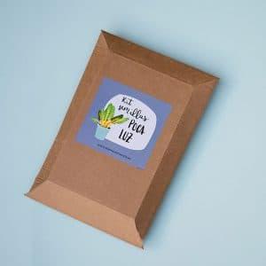 kit de semillas huerto poca luz