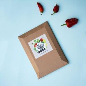 Kit de semillas primavera-verano para macetas