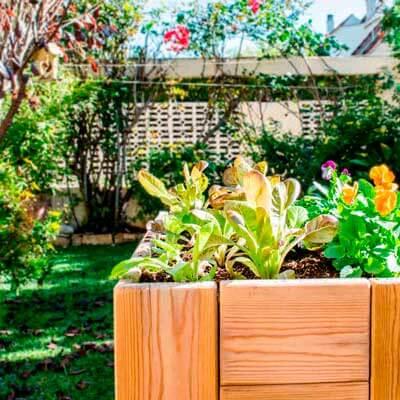 C mo hacer un huerto urbano en casa gu a descargable - Mesa para huerto urbano ...