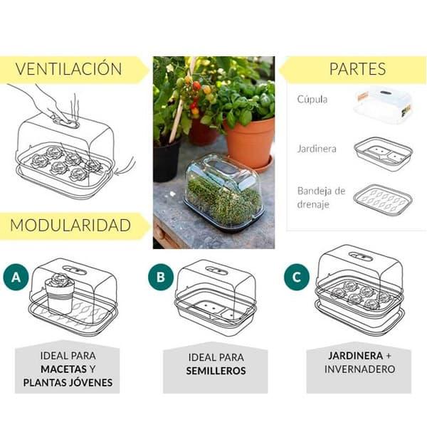 mini invernadero para semilleros grow house