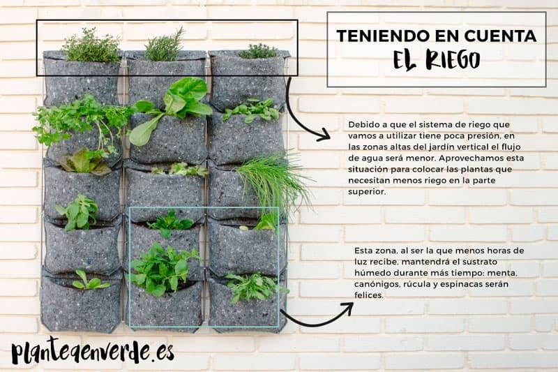cómo regar jardín vertical