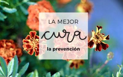 17. La mejor cura: una buena prevención