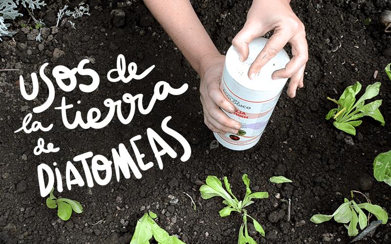 www.planteaenverde.es